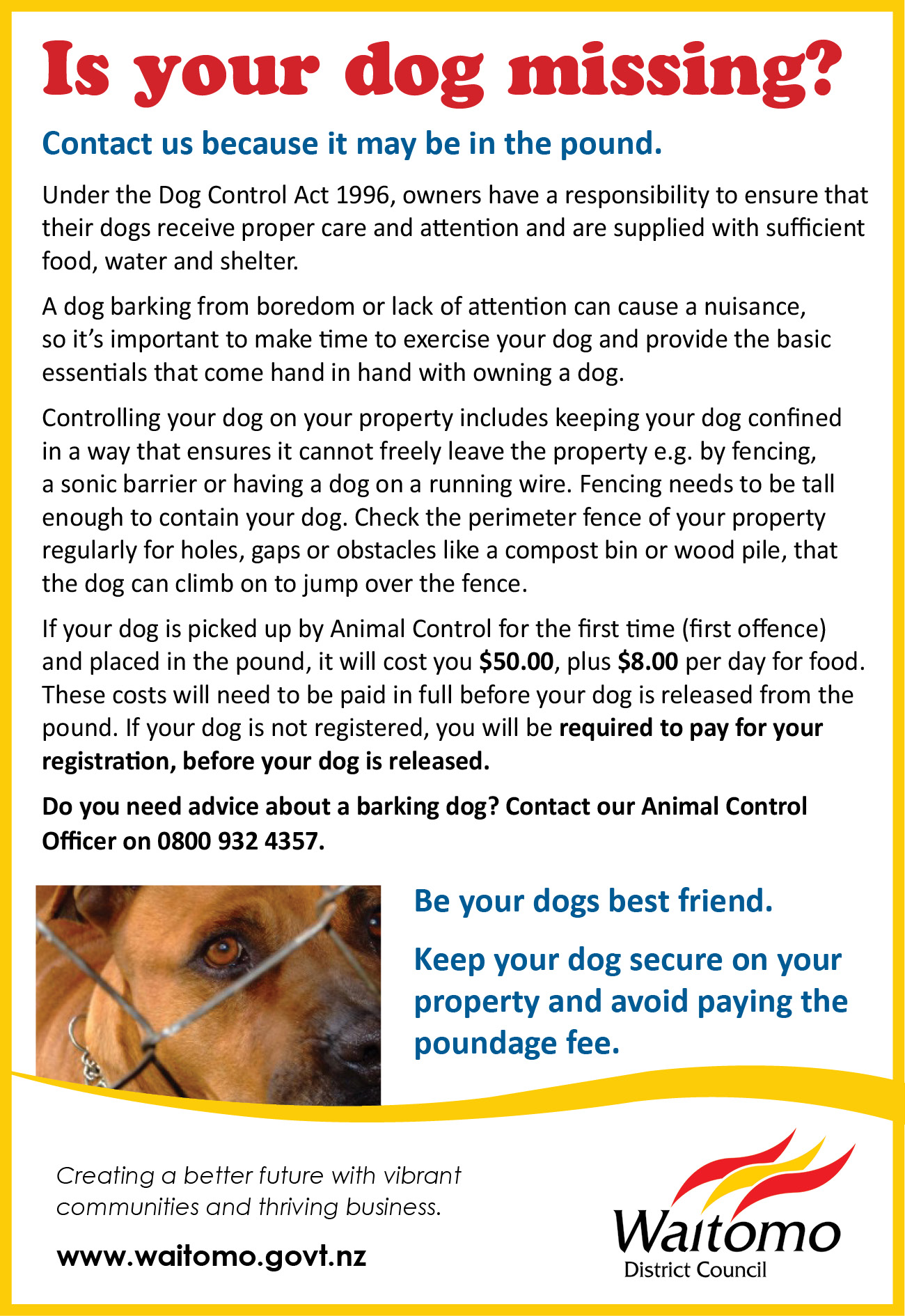 Is your dog missing? Contact Waitomo District Animal Control.