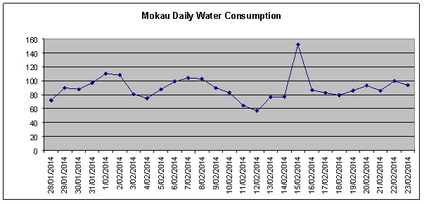 Mokau daily water consumption