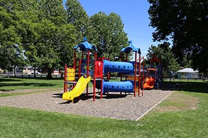 WDC's playgrounds comply with safety standards