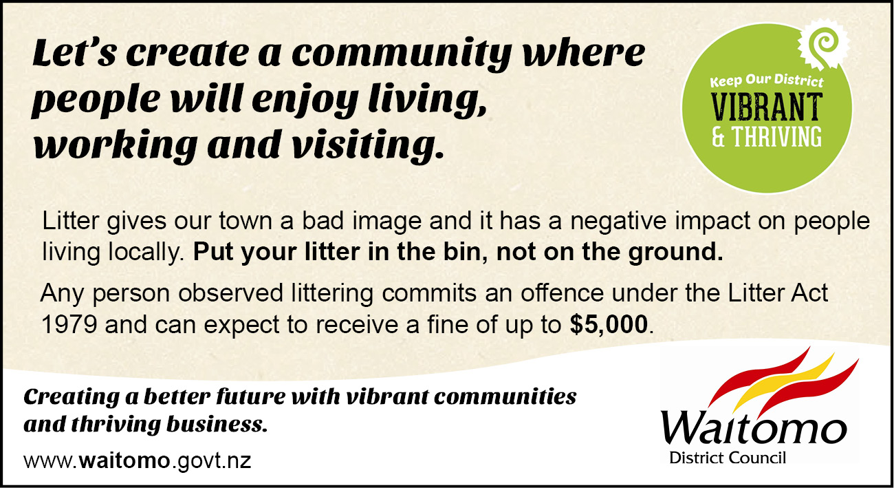 Keep our District Vibrant and Thriving advert 17 December 2015