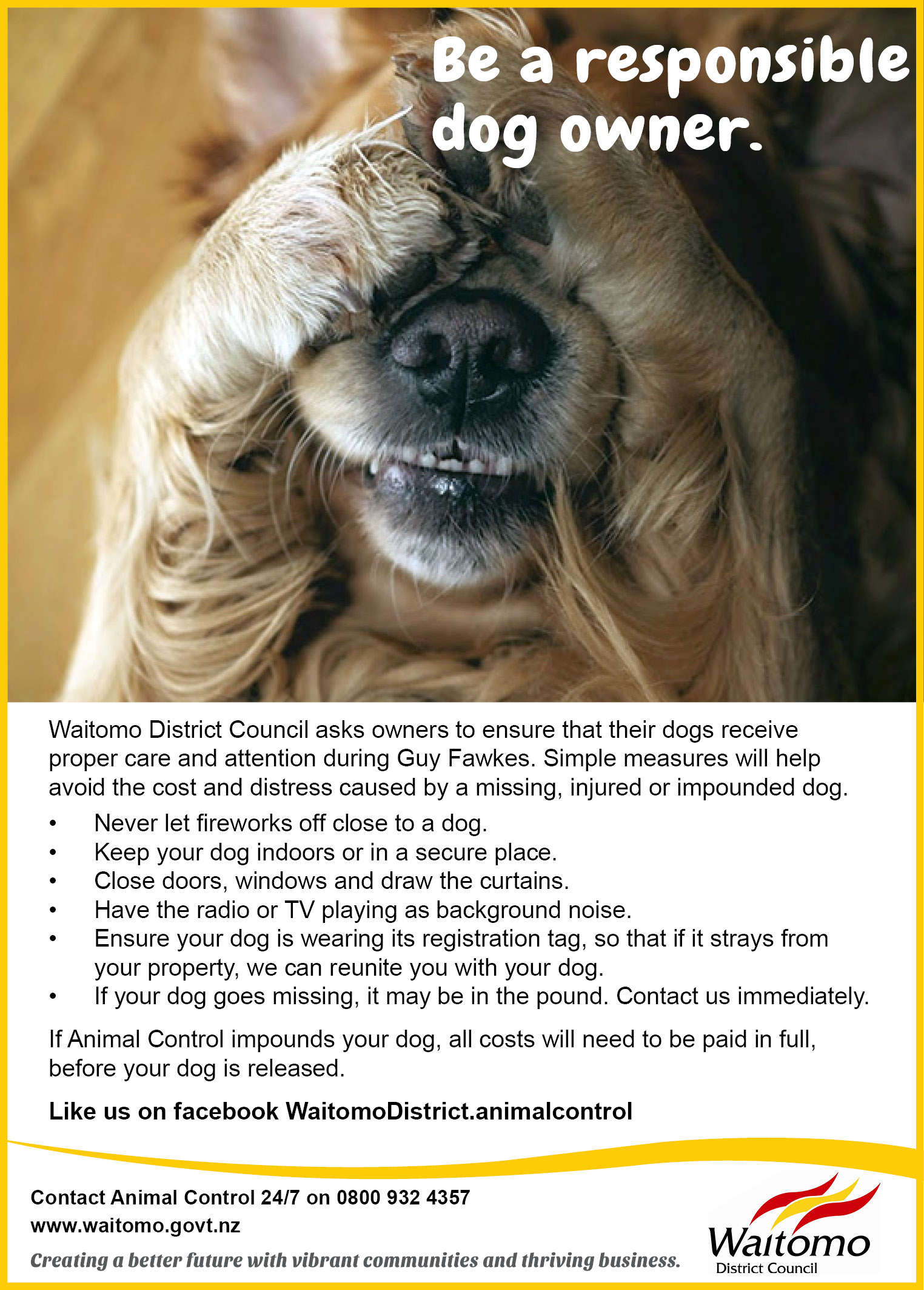 Waitomo District Animal Control_Be a responsible dog owner advert