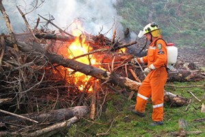Annual Restricted Fire Season is coming